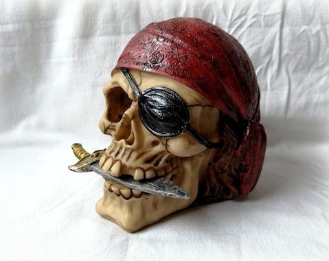 Piraten schedel