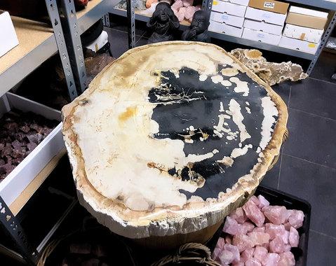 Versteend hout tafelblad