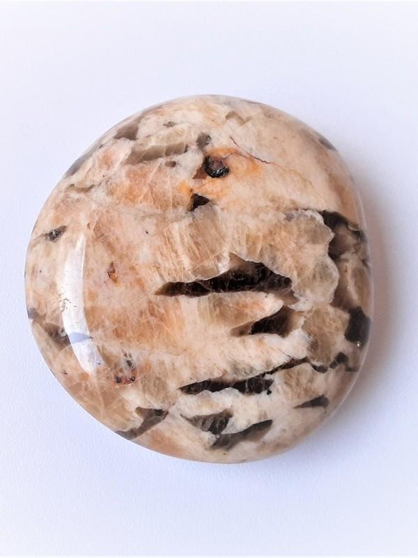 Oplegger/platte steen Zebradoriet 02