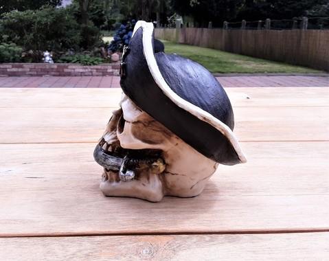 Schedel piraat